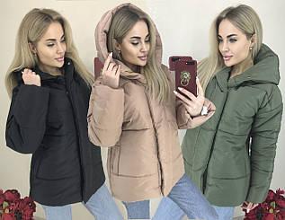 Женская куртка с капюшоном еврозима /разные цвета, 42-46, ft-1045/