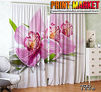 Фотошторы орхидея на белом фоне