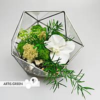 Флорариум с белой орхидеей и стабилизированными растениями - необычный подарок ко Дню Влюбленных, G27