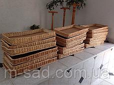 Лотки плетеные 30x30х10 торговые для магазина, фото 3