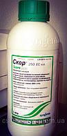 Фунгіцид Скор ( дифеноконазол 250г/л )