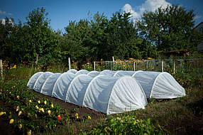 Парник, теплица, агропарник (подснежник) 3 метра плотность 42г/м