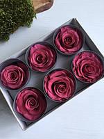 Роза стабилизированная тёмно розовый  ( 5,5 см )