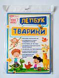 НУШ Міні-лепбук. Тварини. (НП), фото 2