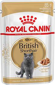 Royal Canin BRITISH ADULT консервы для кошек породы британская короткошерстная, 85 г