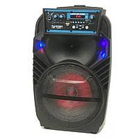 Акустическая система Kimiso QS-801 с микрофоном