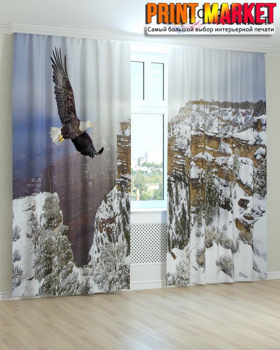 Фотошторы орел над скалами
