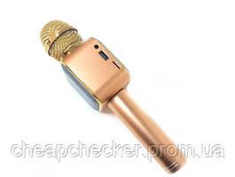 Беспроводной Bluetooth Караоке-Микрофон DM Karaoke WS 1818