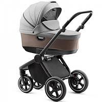 Детская коляска 2в1 Jedo Lark R1 (LarkR1)