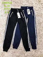 Спортивные штаны для девочек, S&D, 134,146,158,164 см,  № CH-6009