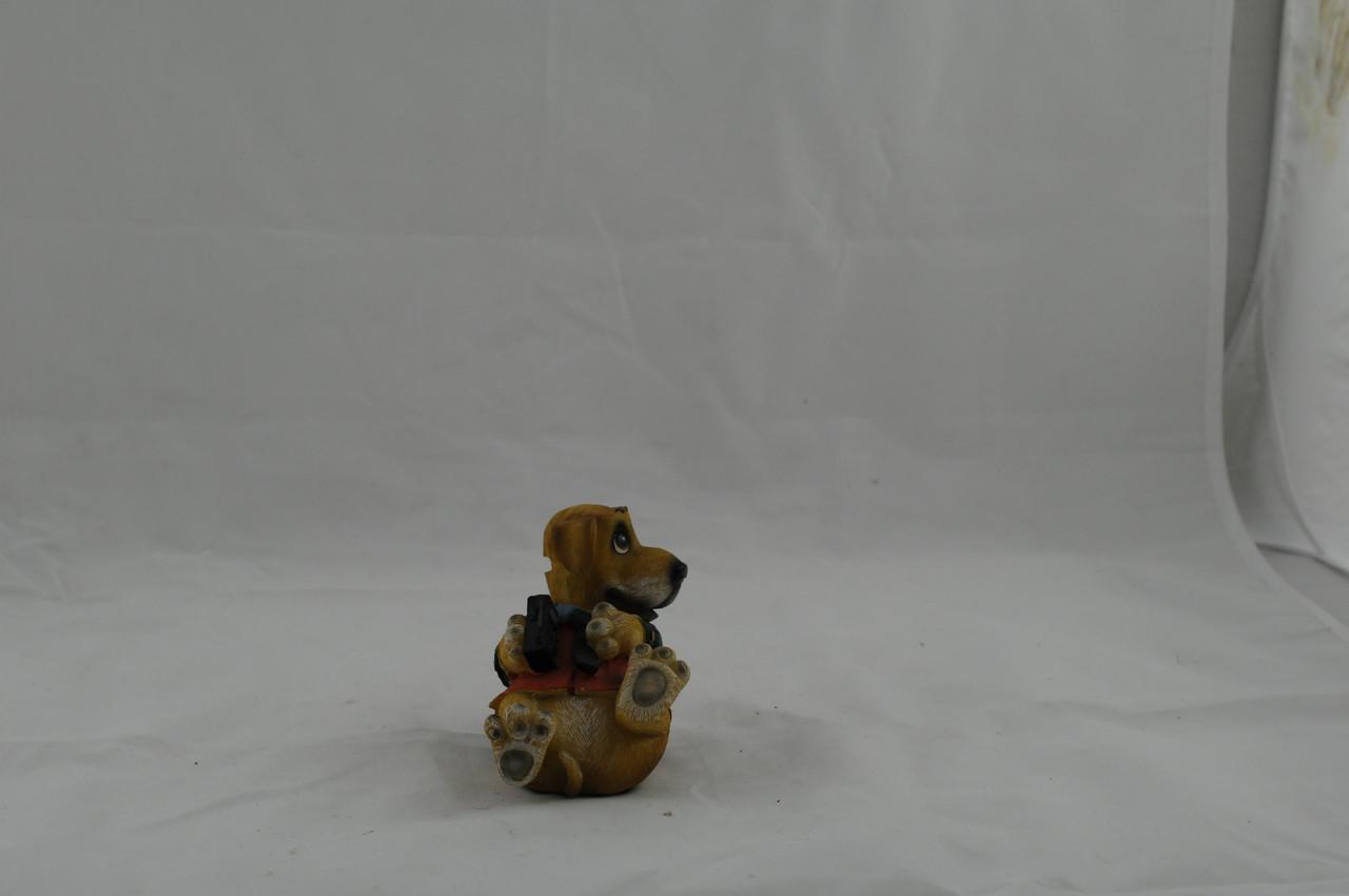 Сувенір собака
