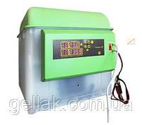 Инкубатор бытовой универсальный Спектр-84 любые яйца  220В 12В автоматический переворот, фото 2