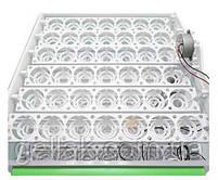 Инкубатор бытовой универсальный Спектр-84 любые яйца  220В 12В автоматический переворот, фото 4