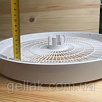 Сушилка для овощей и фруктов Волтера - 1000 Люкс (капиллярный термостат), фото 2