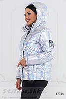 Укороченная куртка для полных Серебро, фото 1