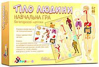 Гра навчальна с багаторазовими наліпками Тіло людини (укр.), Умняшка