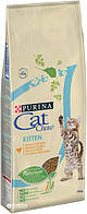 Cat Chow для котят