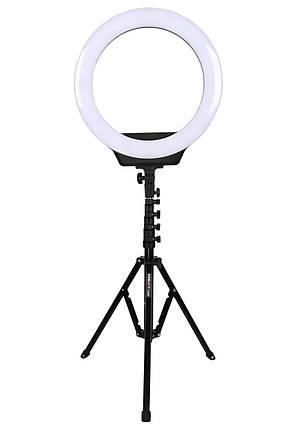 Кільцева світлодіодна лампа AFI R116 зі стійкою, кільцевої led світло 3200-6500к, фото 2