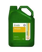 Інсектицид Актуал (5л) - ALFA Smart Agro