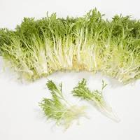 Семена салата Корби, 1000 семян (драже), Rijk Zwaan, фото 1