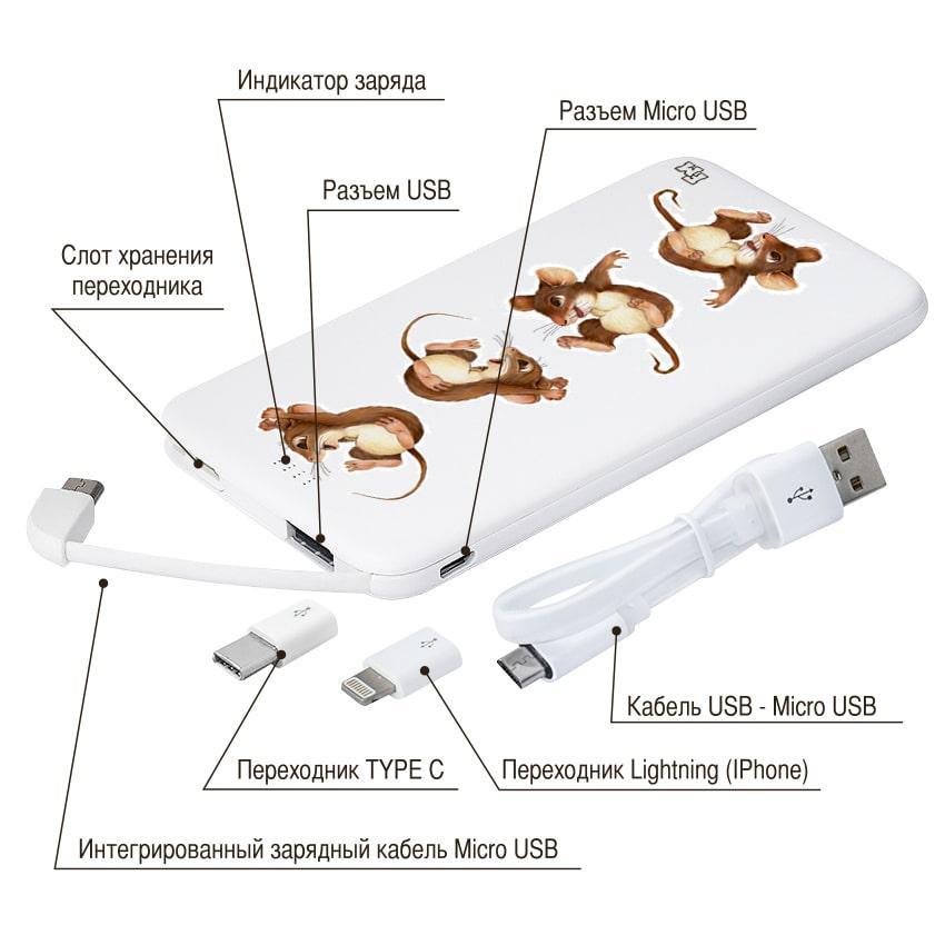 Внешнее зарядное устройство С Новым Годом, 5000 мАч (E505-48)