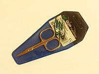 Ножницы маникюрные для ногтей 01-0031, DUP