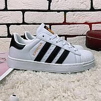 Кроссовки женские Adidas Superstar  0004 ⏩ [ 36,37,38,39,40 ]