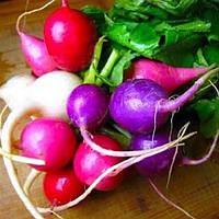 Редис Фиолетовая слива, фото 1