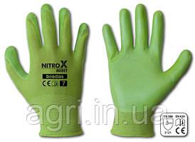 Перчатки рабочие NITROX MINT нитрил, размер 8