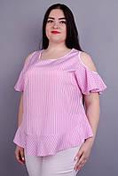 Блузка Меринда розовый, фото 1