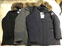 Одяг CANADA GOOSE пуховик, фото 1