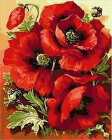 Картина раскраска по номерам на холсте - 40*50см Mariposa Q1633 Великолепные маки