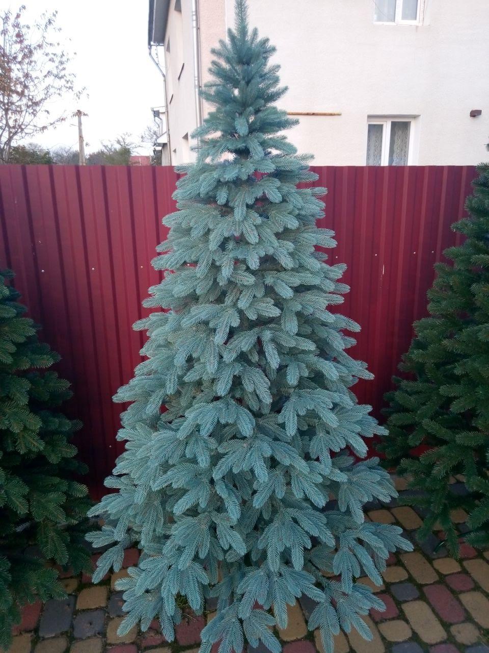 Литая новогодняя елка Премиум 1.80м. голубая