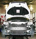 Декоративно-защитная сетка радиатора Fiat Linea фальшрадиаторная решетка, бампер, фото 2