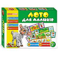 Игра Creative 3967 Лото для малышей, Овощи, фрукты, деревья, грибы, ягоды  и цветы 13109007У