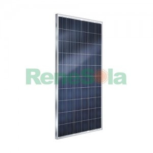 ReneSola Poly JC265M P
