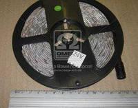 Гибкая светодиодная  лента 24V 300 SMD 2835, 5м 8мм*2,7мм,  влагостойкая, зеленая (производство Китай), артикул 30021335