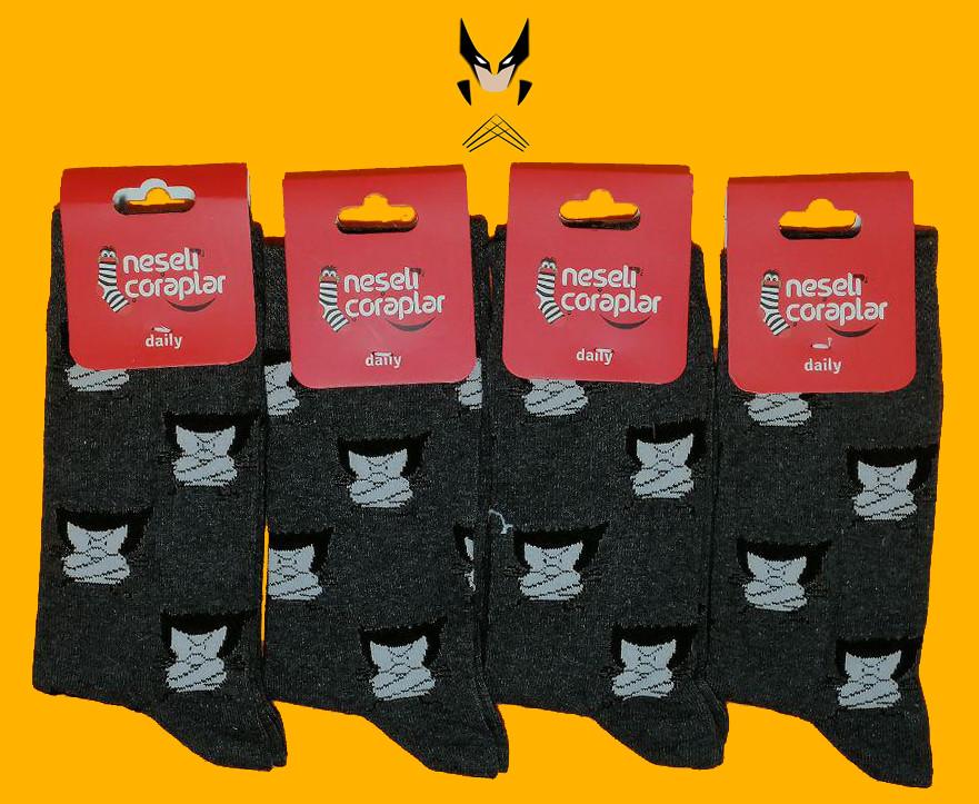 Носки Neseli Daily Россомаха серые 5961