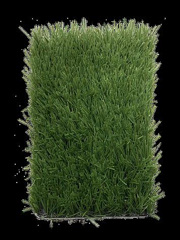 Stemgrass 40, фото 2