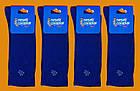 Носки Neseli Daily Premium Голубика 5988, фото 2