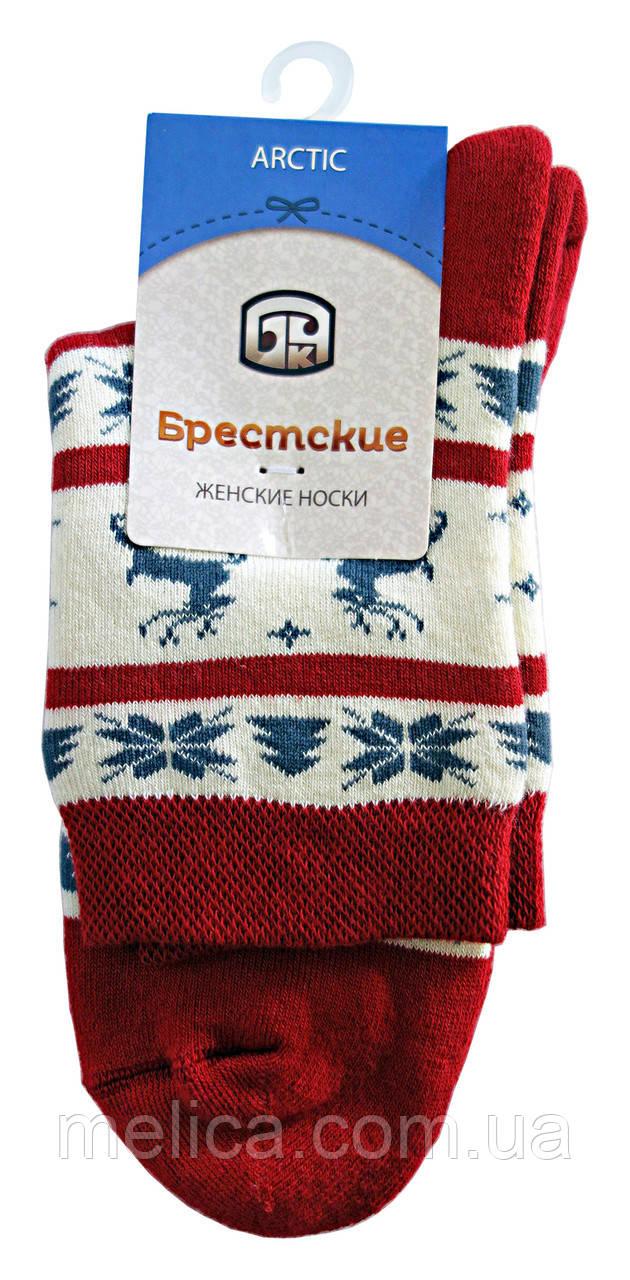 Носки женские махровые Брестские Arctic 15С1408, рис.160, р.25, т.вишневый
