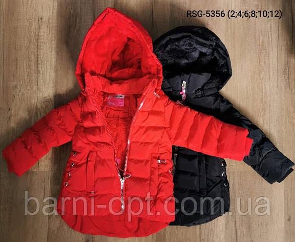 Куртки зимние на девочек, Nature, 2, 10 лет, фото 2