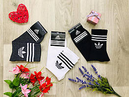 Носки мужские демисезонные спортивные высокие из хлопка Adidas Турция размер 41-44 ассорти