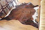 Шкура Коровы рыжевато-коричневая большая, фото 4