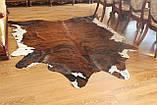 Шкура Коровы рыжевато-коричневая большая, фото 7