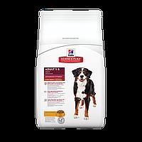 HILL'S SCIENCE PLAN Adult Large Breed Сухой Корм для Собак з Курицей - 14 кг