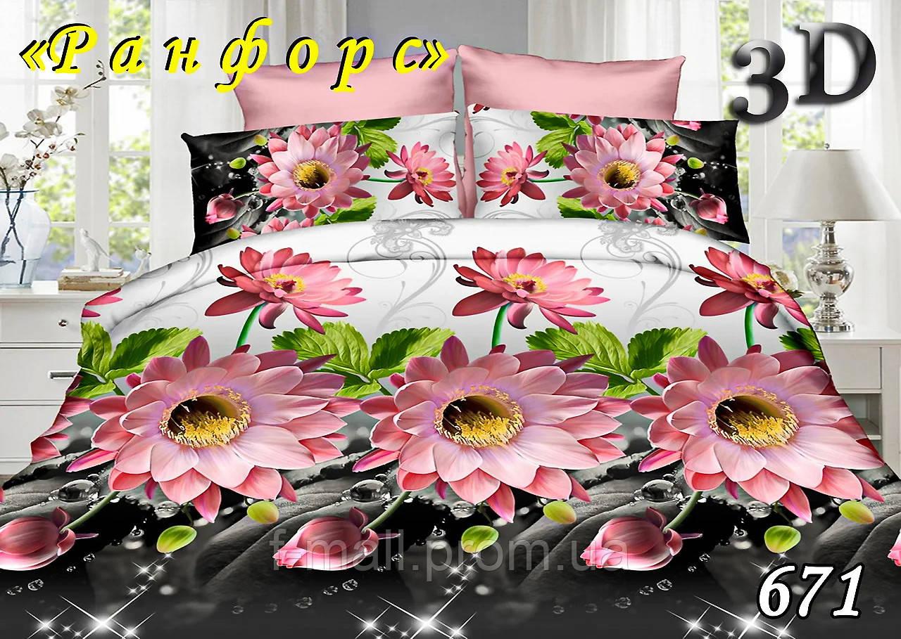 Комплект постельного белья Тет-А-Тет (Украина) евро ранфорс (671)