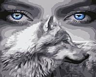 Художественный творческий набор, картина по номерам Взгляд волчицы, 50x40 см, «Art Story» (AS0588), фото 1