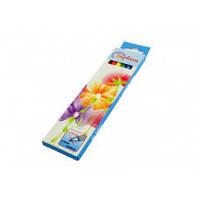 Олівці кольорові 6 кол.Барвінок квіти шк.4820071014784