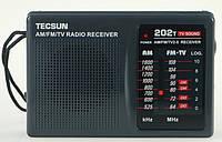Tecsun R-202